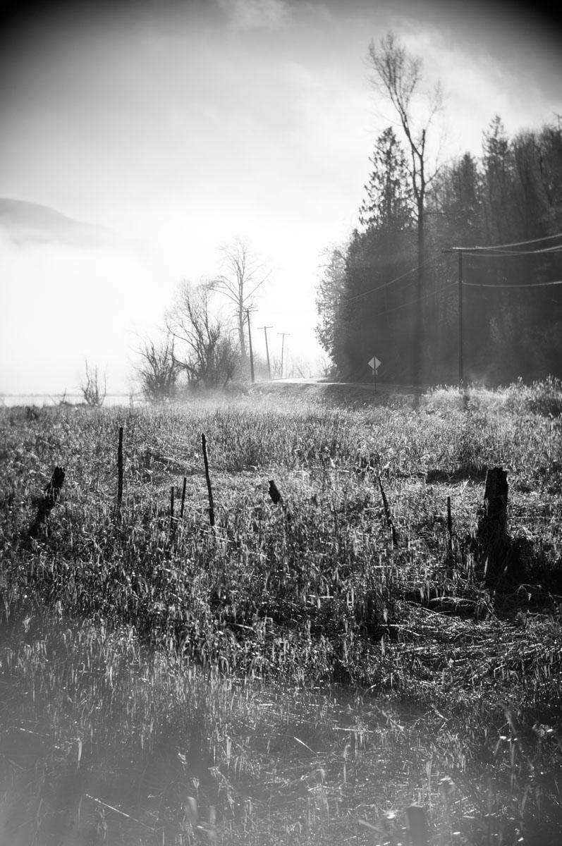Beaver Lake Rd. (3410)