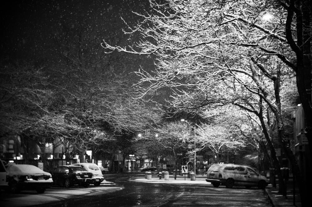 morning-snow-3055