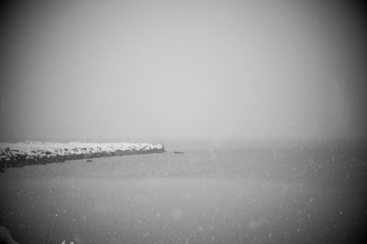 Squalicum Beach I