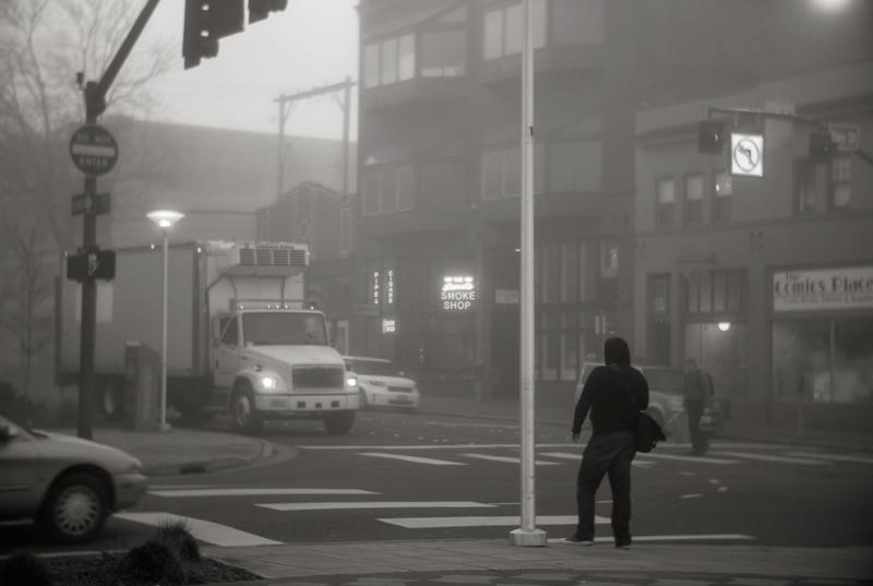 shadows_fog_DSC6560