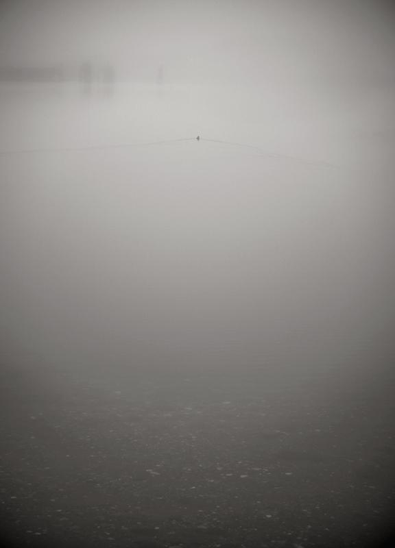 shadows_fog_DSC6672